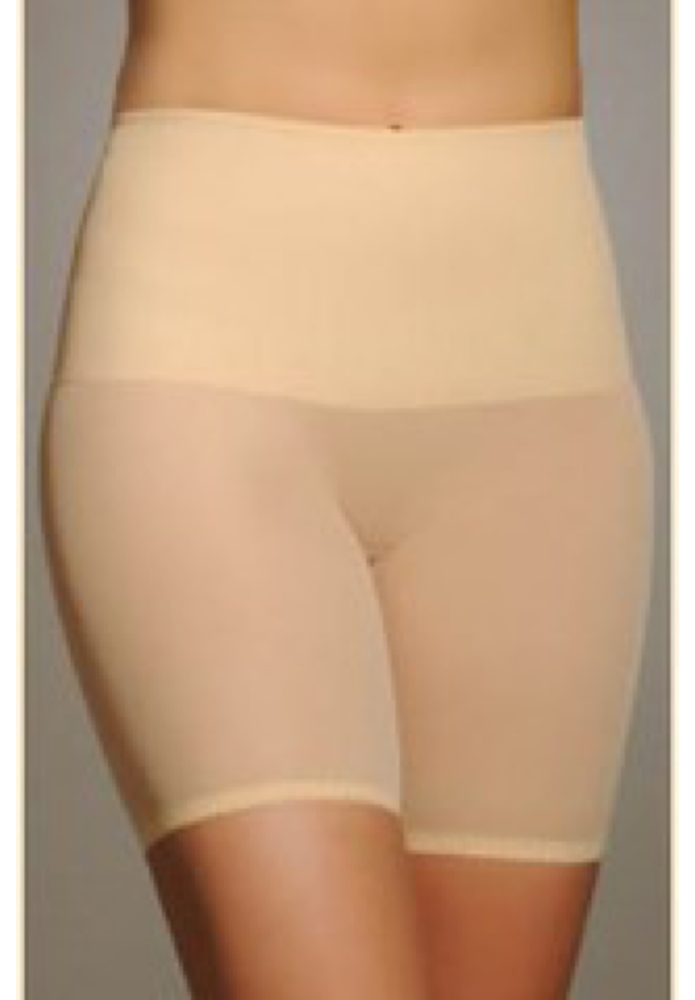 Rago Tummy Shaper Band Sheer Bike Pant,